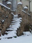 20131117_Traíd nevado (17)